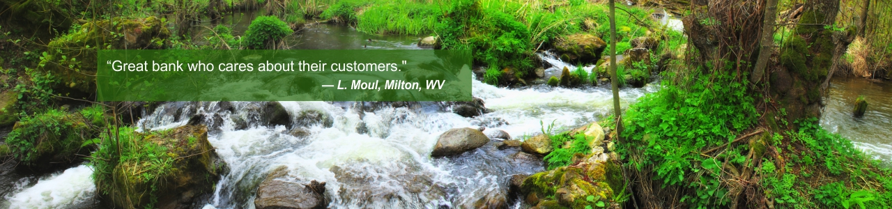 Ad: Customer L Moul of Milton, WV, says Great bank who cares about their customers